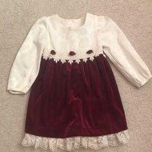 Other - Long Sleeve Rose Velour Dress